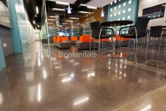Bomanite Custom Concrete Polishing Systems with Patene Teres