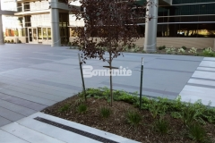 This stunning hardscape plaza area was created using Bomanite Sandscape Texture decorative concrete and perfectly showcases the beauty of quality architectural concrete.
